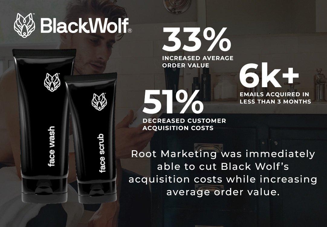 CaseStudy BlackWolf